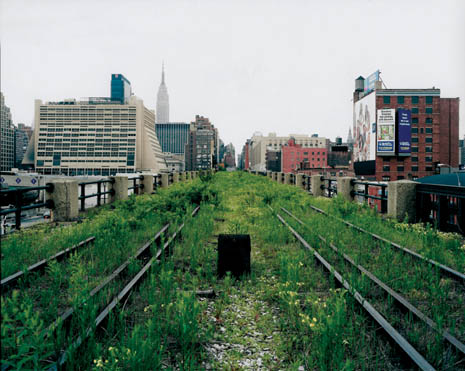 NY Elevated Landscapes