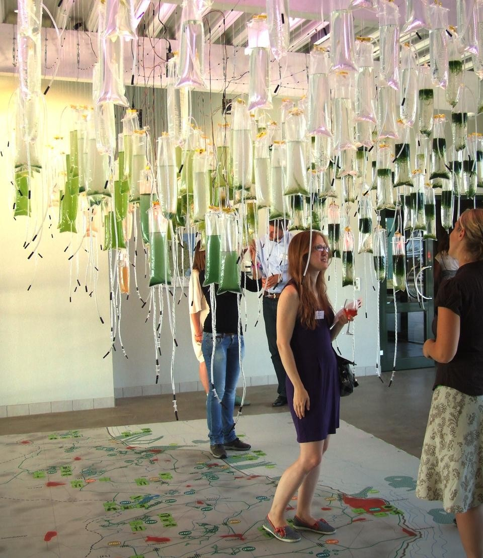 The Algae Hanging Gardens prototype invites visitors to experience the photosynthesis of algae and contribute to the cultivation of the project.