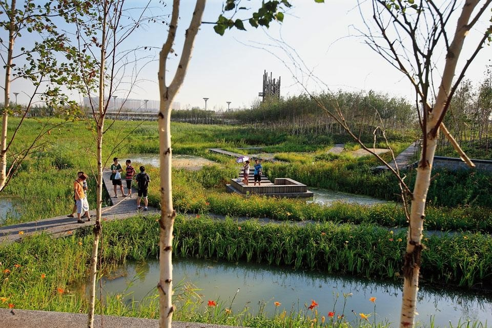 A network of walkways