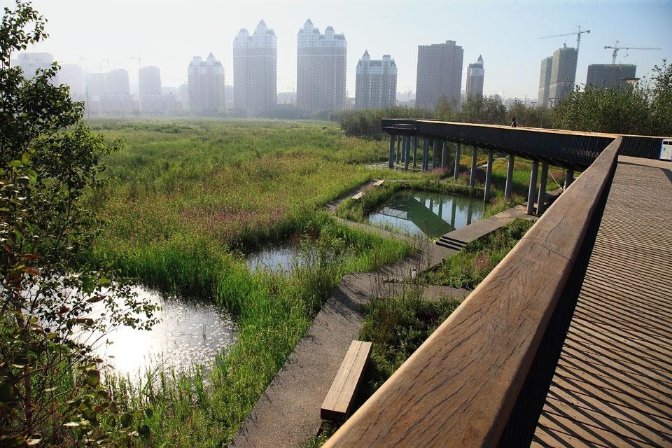 The elevated walkway