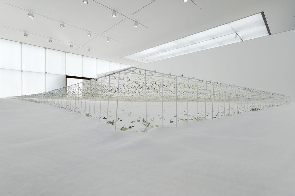 Junya ishigami another scale of architecture horizon