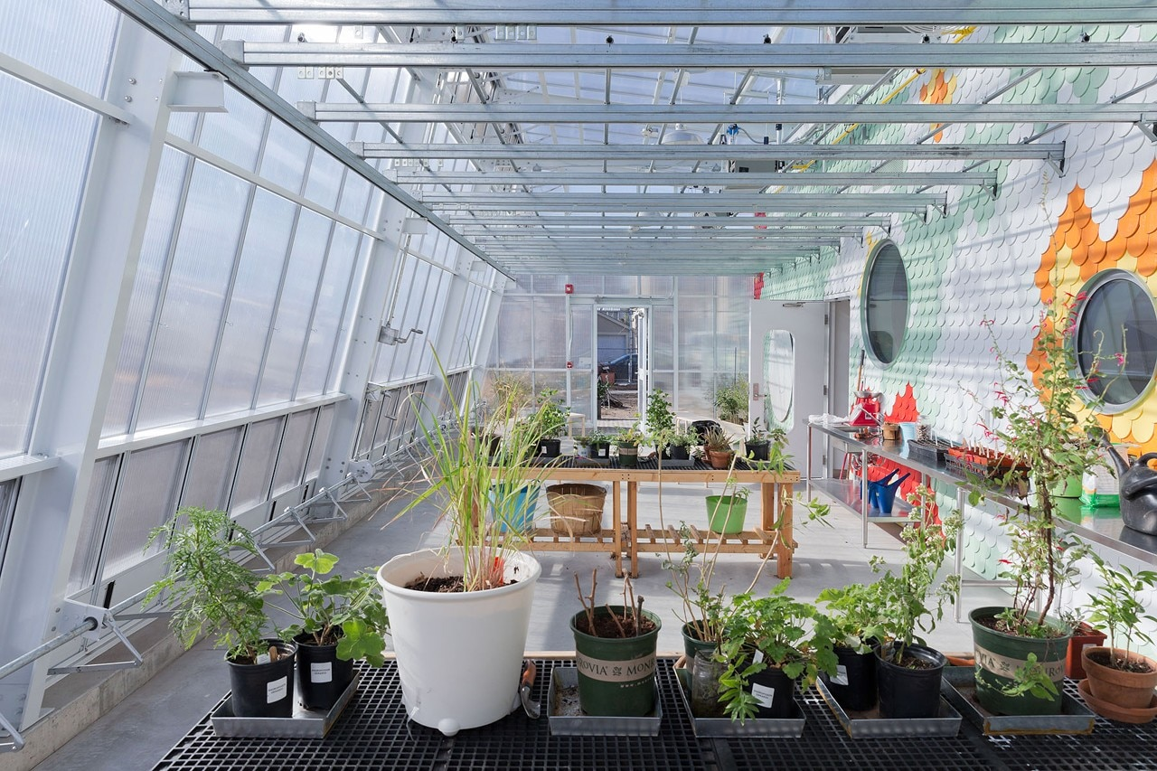 Tool Shed With Greenhouse