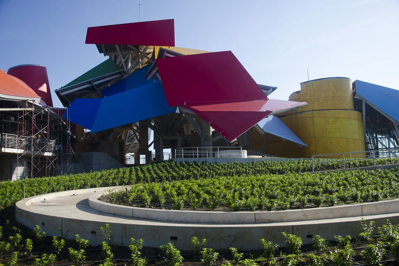 Frank Gehry Biomuseo Domus