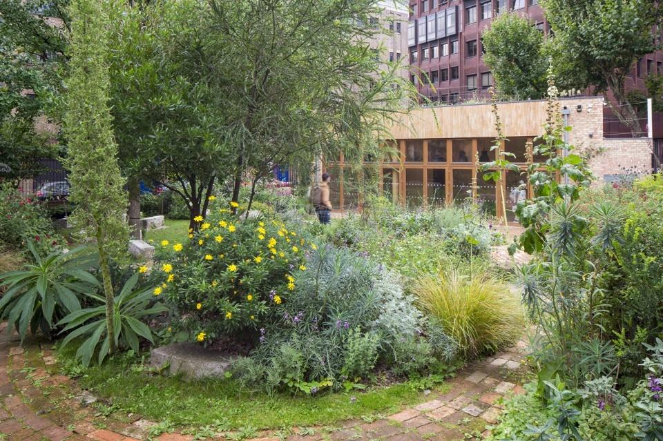 Community garden - Domus