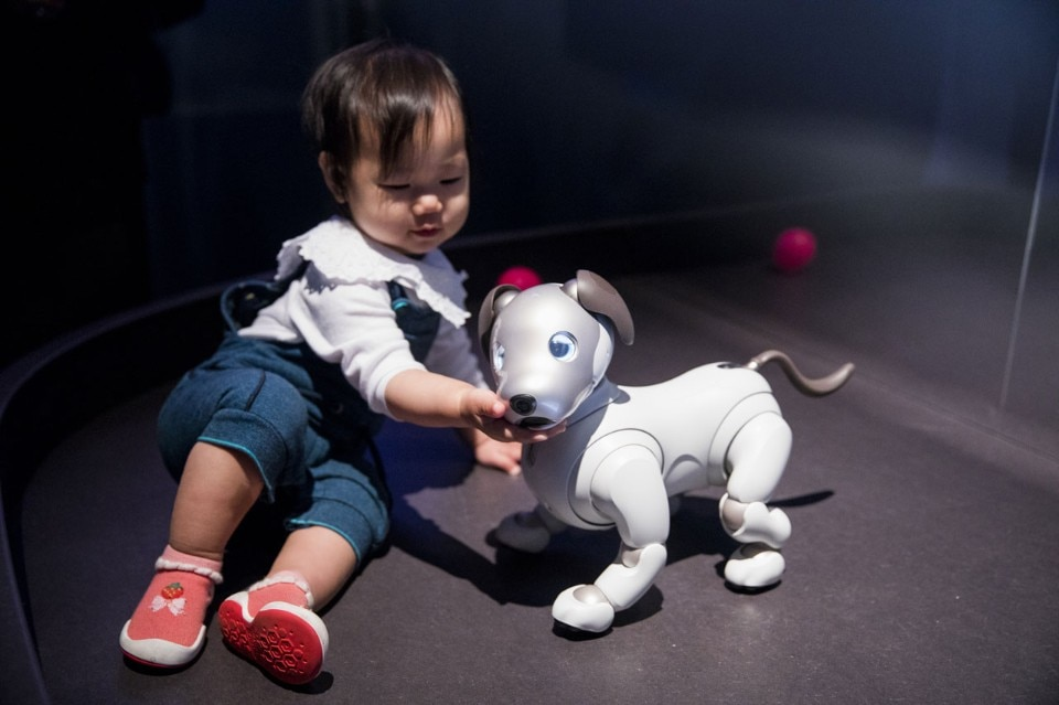 AI: More than Human, Barbican Centre. Aibo, © Sony Corporation. Photo Tristan Fewings/Getty Images