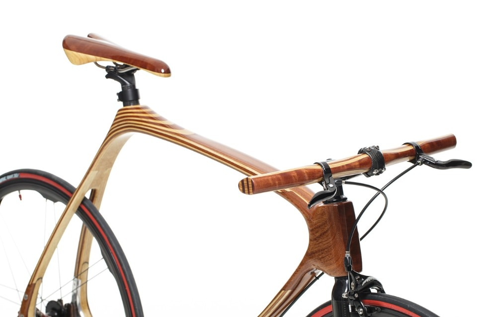 Carbon Wood Bike - Domus