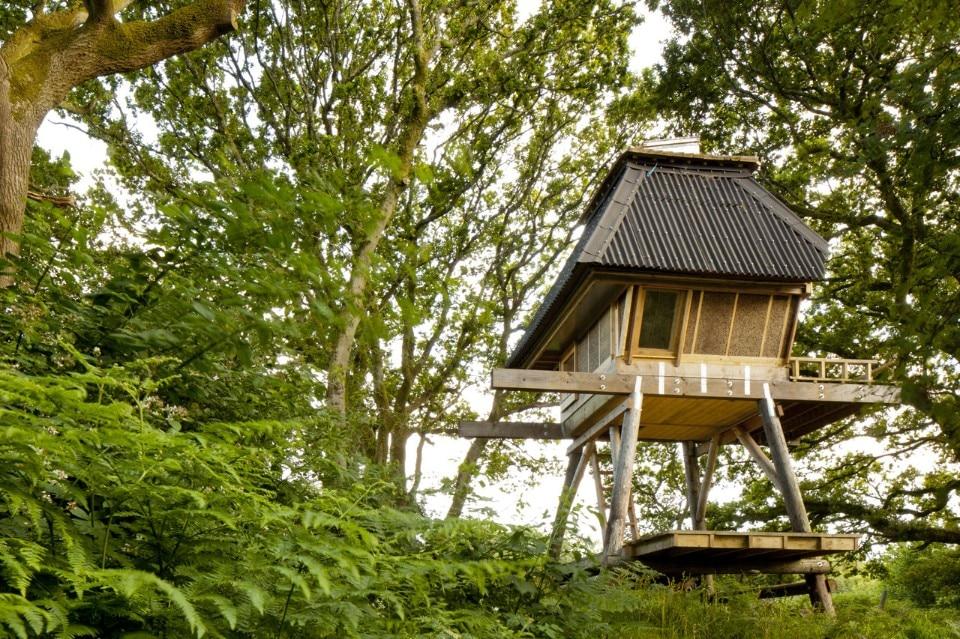 Hut On Stilts Domus