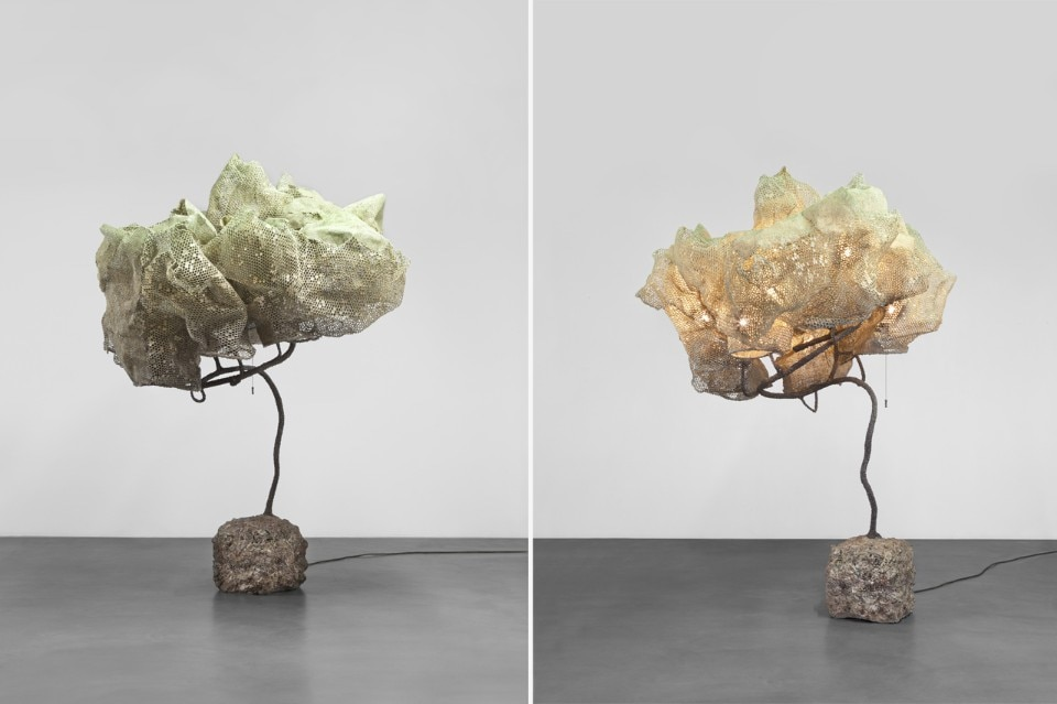 Nacho Carbonell S Forest Domus