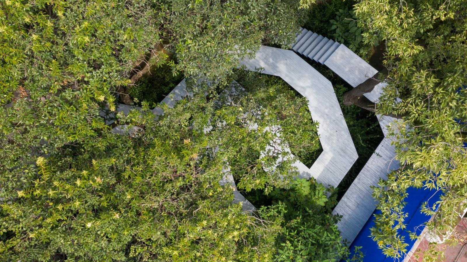 """Giardino Di Una Casa flying carpet"""", installazione di go hasegawa nel giardino"""