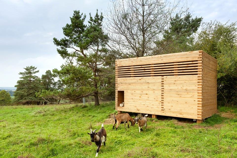 Il cubo di legno domus for Mazzocchi strutture in legno