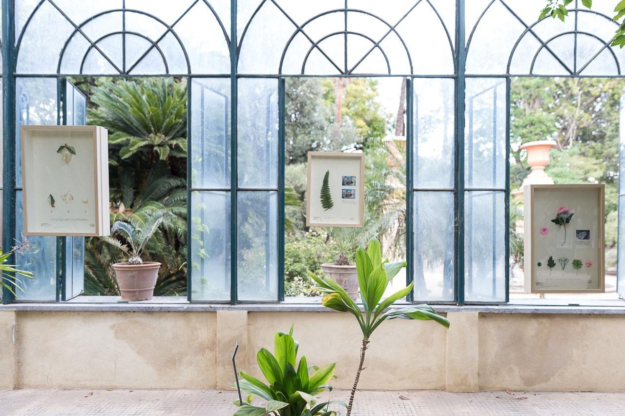 Palermo tra arte e natura il giardino planetario nell - Arte e giardino ...