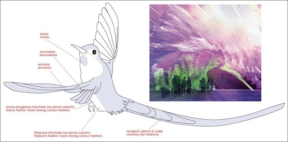 the Violet-Tailed Sylph (<i>Aglaiocercus coelestis</i>). Alina Amiri and Joanna-Maria Helinurm investigated the theme of colour through the morphology and colour characteristics of the bird's feathers. This led to the design of a cladding panel for a pavilion with iridescent colours (left and above).