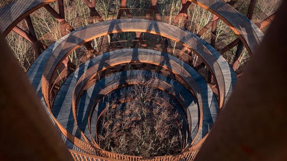 Effekt s Corten and timber walkway spirals above tree canopy
